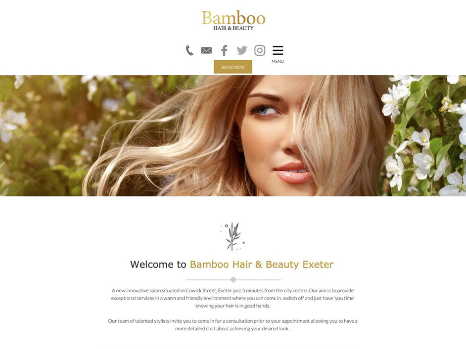 The Bamboo website created by it'seeze Exeter